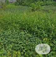 Plot of Land At Ikate Lekki Phase 1 For Sale. | Land & Plots For Sale for sale in Lagos State, Lekki Phase 1