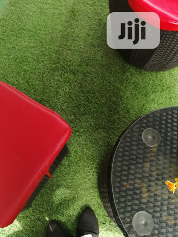 Get Beautiful Artificial Grass For Studio Events And Wall Frames