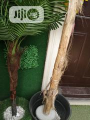 Decorate Your Front Door Wall With Artificial Grass | Landscaping & Gardening Services for sale in Lagos State, Ikeja