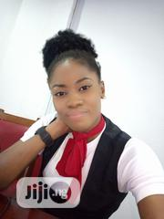 Airport Cleaners CV | Housekeeping & Cleaning CVs for sale in Lagos State, Surulere