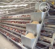 China Factory Poultry Cages Chicken Battery Cages Hot Galvanized Cages | Farm Machinery & Equipment for sale in Edo State, Akoko-Edo