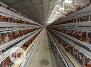 China Factory Battery Chicken Cages 4tires 160birds Best Poultry Cage | Farm Machinery & Equipment for sale in Abuja (FCT) State, Abaji