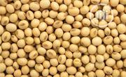 Soya Bean, N135,000 Per Ton | Feeds, Supplements & Seeds for sale in Osun State, Osogbo
