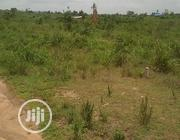 Acres of Land Available in Ibadan   Land & Plots For Sale for sale in Oyo State, Egbeda
