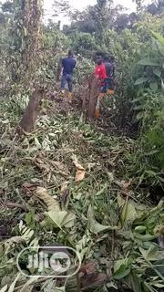 Land for Sale Ekorinim 2 | Land & Plots For Sale for sale in Cross River State, Calabar