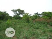 7 Acres of Farm Land Close to Akure | Land & Plots For Sale for sale in Ondo State, Akure