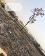 Several Plots Of Land, Very Close To D Main Road Of Dalute Express, Ib | Land & Plots For Sale for sale in Oyo State, Ibadan