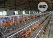 Battery Cages China | Farm Machinery & Equipment for sale in Abuja (FCT) State, Karmo