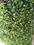 High Quality Synthetic Grass Rug At Your Affordable Price   Home Accessories for sale in Surulere, Lagos State, Nigeria