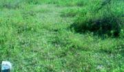 A Plot of Land for Sale at Ologuneru | Land & Plots For Sale for sale in Oyo State, Ibadan