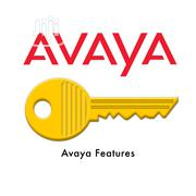 AVAYA License Keys | Computer & IT Services for sale in Lagos State, Lagos Mainland