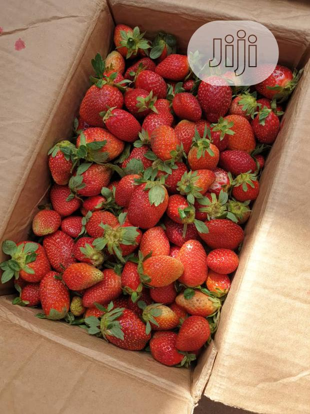 Archive: Strawberries