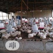 Poultry Litter For Sale | Livestock & Poultry for sale in Nasarawa State, Karu-Nasarawa