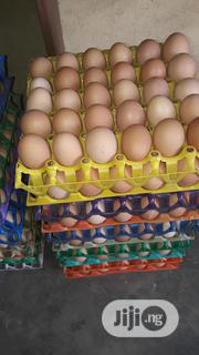 Exclusive Egg Depot | Meals & Drinks for sale in Lagos State, Ifako-Ijaiye