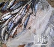 Titus Fish | Fish for sale in Abuja (FCT) State, Durumi