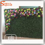 Wall Flower For Sale | Garden for sale in Enugu State, Nsukka