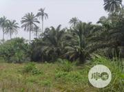 Farm Land For Rent | Land & Plots for Rent for sale in Abuja (FCT) State, Gwagwalada
