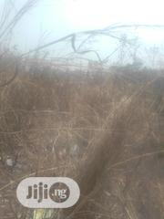 15 Plots Of Land 100 By 100 Located In Achalla Ibusa Asaba   Land & Plots For Sale for sale in Delta State, Oshimili North