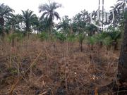 1 Plot of Land for Sale Outrightly | Land & Plots For Sale for sale in Imo State, Mbaitoli