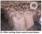 Cocoa Nuts | Feeds, Supplements & Seeds for sale in Lagos State, Lagos Mainland