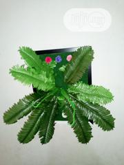 Wall Plants Frames for Commercial Interior Designs | Home Accessories for sale in Lagos State, Ikeja