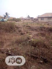 Over 1 Plot of Land at Bako, Apata Ibadan | Land & Plots For Sale for sale in Oyo State, Ido