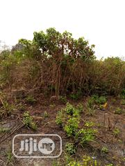 Buy Cheap Acres Of Land At Gbaga | Land & Plots For Sale for sale in Lagos State, Ikorodu