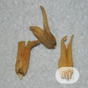 Lucky Hand Root   Feeds, Supplements & Seeds for sale in Lagos State, Shomolu