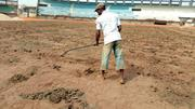 Phimax Sport Stadium Pitch Construction | Landscaping & Gardening Services for sale in Delta State, Warri