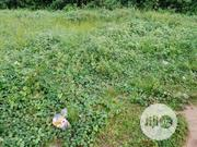 A Genuine Land For Sale | Land & Plots For Sale for sale in Kwara State, Ilorin West