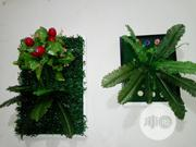 Beautiful Wall Plant Frame for Hospitals and Bars | Home Accessories for sale in Lagos State, Ikeja