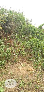 Virgin Land For Sale Off Airport Road | Land & Plots For Sale for sale in Edo State, Benin City