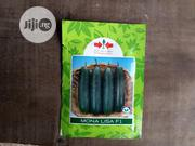 Monalisa F1 Cucumber (1000 Seeds)   Feeds, Supplements & Seeds for sale in Delta State, Uvwie