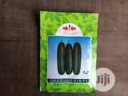 Greengo F1 Cucumber Seed   Feeds, Supplements & Seeds for sale in Delta State, Uvwie