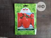 Padma F1 Tomato Seed (5g)   Feeds, Supplements & Seeds for sale in Delta State, Uvwie