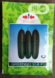 Greengo F1 Cucumber Seed (500 Seed Pack)   Feeds, Supplements & Seeds for sale in Delta State, Uvwie
