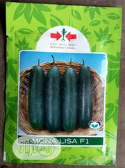 Monalisa F1 Cucumber Seed   Feeds, Supplements & Seeds for sale in Delta State, Uvwie