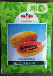 Maradona F1 Semi Dwarf Hybrid Pawpaw Seed   Feeds, Supplements & Seeds for sale in Delta State, Uvwie