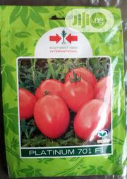 100 Seed Pack Platinum F1 Tomato Seed   Feeds, Supplements & Seeds for sale in Delta State, Uvwie
