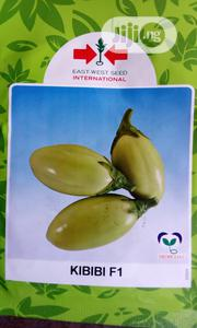 Kibib F1 Egg Plant Seed   Feeds, Supplements & Seeds for sale in Delta State, Uvwie