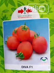 Diva Tomato Seed - 5g   Feeds, Supplements & Seeds for sale in Delta State, Uvwie
