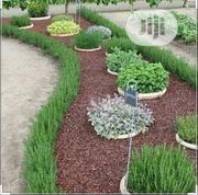 Landscape Designing   Landscaping & Gardening Services for sale in Anambra State, Awka