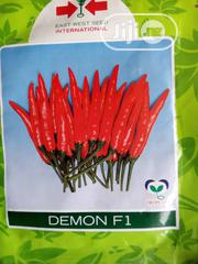 5g Demon F1 Chilli Pepper Seed   Feeds, Supplements & Seeds for sale in Delta State, Uvwie