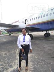 Female Travel Agent | Travel & Tourism CVs for sale in Abia State, Bende