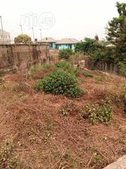 For Sale: A Half of Land at Akala Expressway Oluyole Extension IB | Land & Plots For Sale for sale in Oyo State, Oluyole