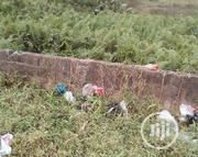 Plot Of Land For Sale   Land & Plots For Sale for sale in Anambra State, Anambra East