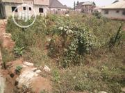 100x100 At Amagba Close To Tarred Road For Sale | Land & Plots For Sale for sale in Edo State, Benin City