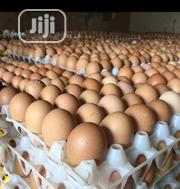 Fresh Eggs For Sales At Affordable Price | Meals & Drinks for sale in Ogun State, Ado-Odo/Ota