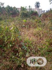 80 by 50 Sized Land for Sale in a Devoped Area at Oteri. No Agent Fee. | Land & Plots For Sale for sale in Delta State, Ugheli
