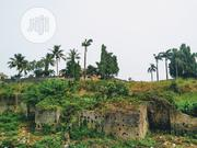 C Of O And A Survey Plan And Receipt   Land & Plots for Rent for sale in Lagos State, Ojodu